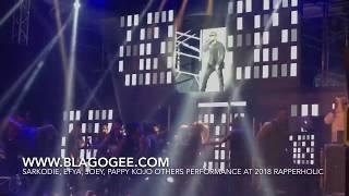 Sarkodie Efya Joey B Kidi Kuami Eugene Others Performance At 2018 Rapperholic Concert