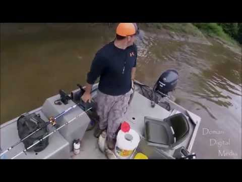"Jumping ""Asian"" Carp in Missouri 