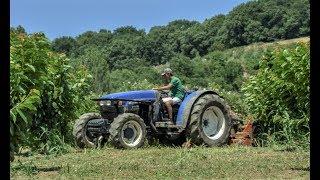 New Holland TN95F Cutting Grass at Cherries