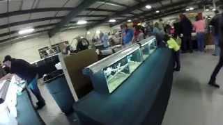 repticon reptile show 2015 atlanta