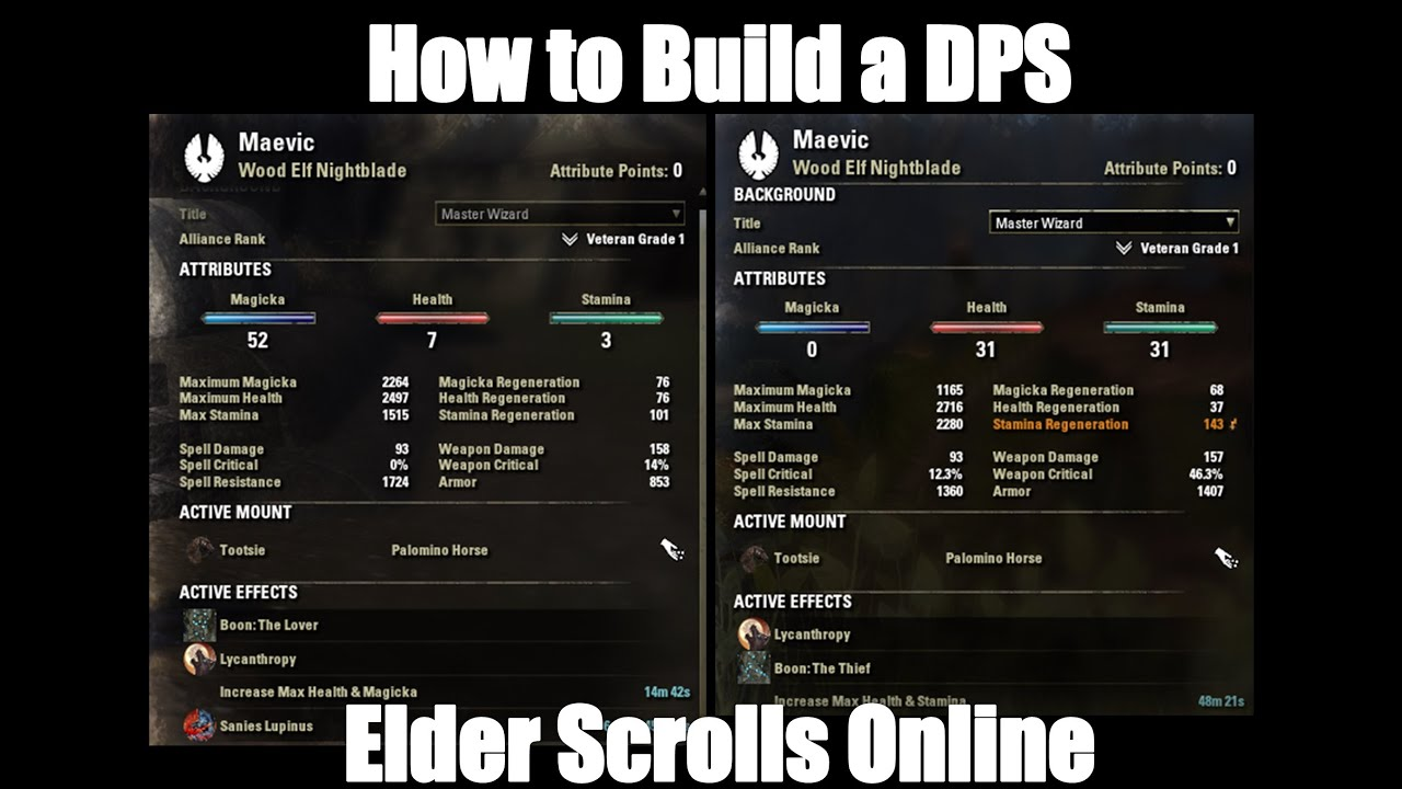 Elder Scrolls Online Best Tank Build