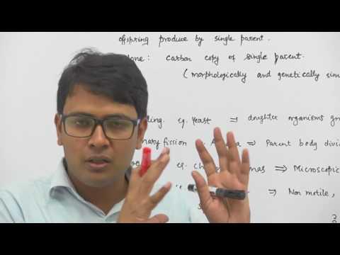Reproduction In Organisms by Dr.Rajeev Ranjan -NEET & AIIMS preparation videos NEET AIIMS