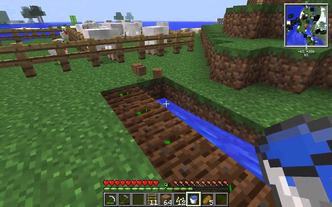 how to grow pumpkins in minecraft