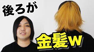 【ドッキリ】相方が後ろだけ金髪にしてたら気づくか?!