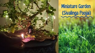 miniaturegarden #gardencraft #gardenideas sivalingam available on amazon and flipkart other materials used in recycle material very simple and easy to make.