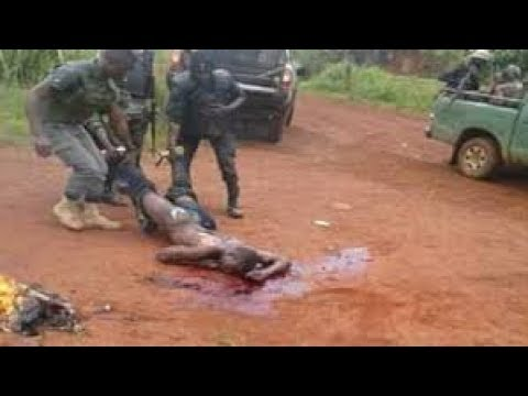 Download Enabled Genocide In  Ambazonia