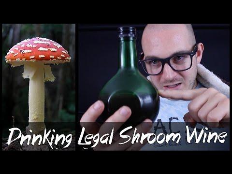 Drinking Amanita Muscaria Mushrooms