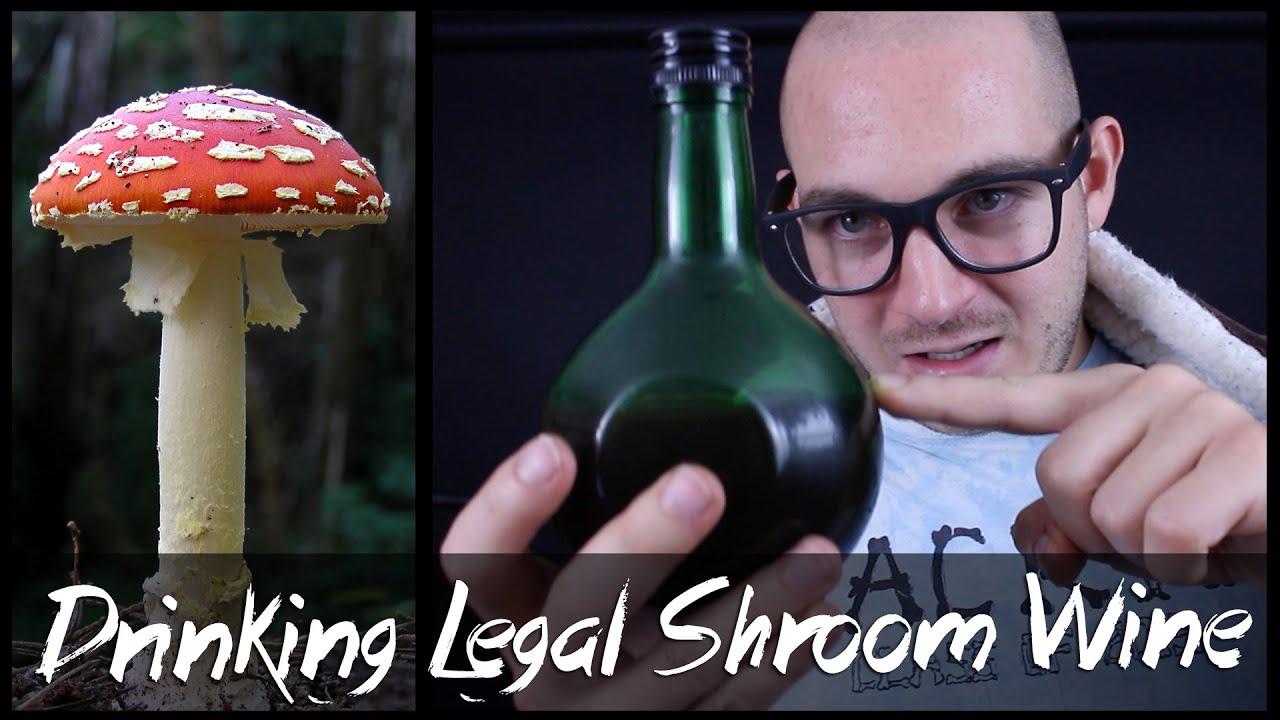 Download Drinking Amanita Muscaria Mushrooms