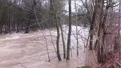 Hochwasser am 02.02.2013 in Oberndorf am Neckar