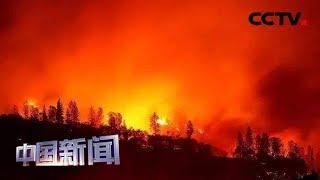 [中国新闻] 关注亚马孙雨林大火 巴西社会思考如何平衡环保与发展 | CCTV中文国际