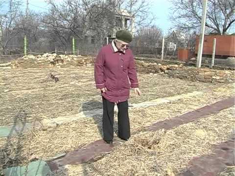 видео: 05.03.13 Огород для ленивых