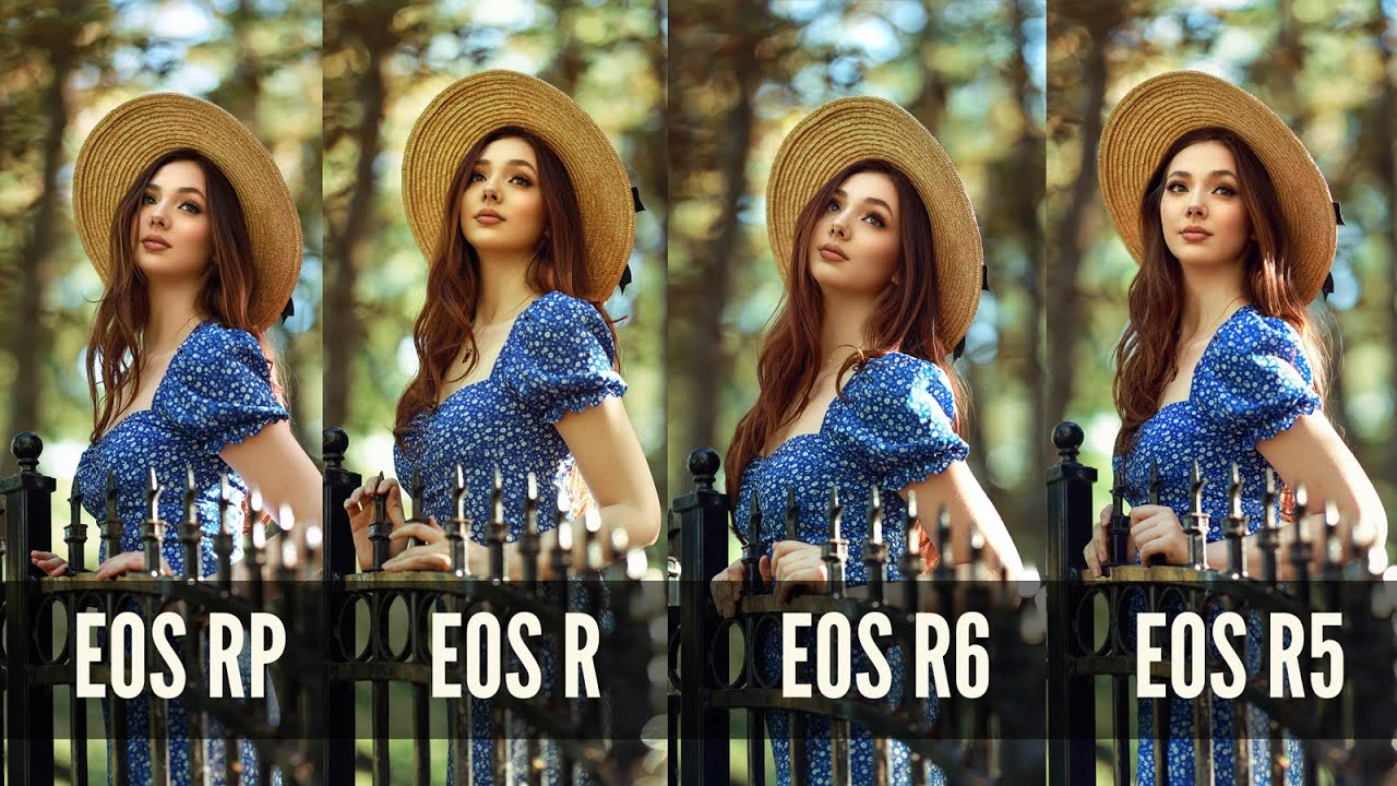 Comparing all 4 Canon Mirrorless Cameras EOS RP, R, R6 and R5