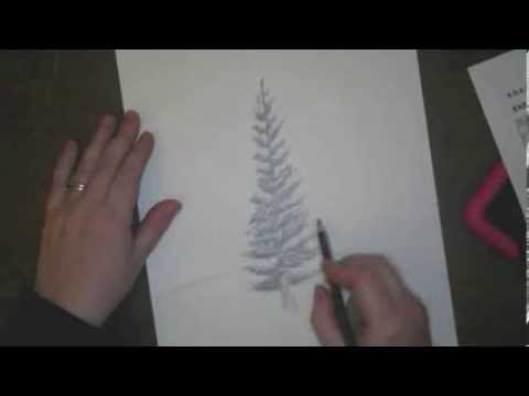 how to draw pine trees youtube