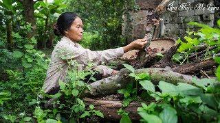 '' Banh Te '' Viet Nam