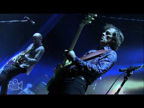Hoodoo Gurus - Crackin' Up (Live at Dig It Up! Sydney) | Moshcam