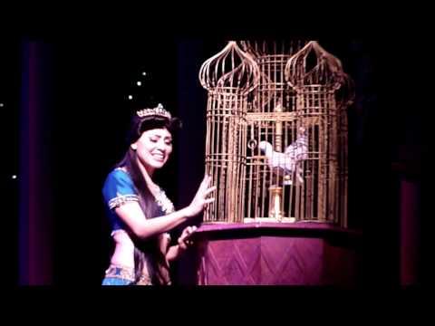 Disney's Aladdin: A Musical Spectacular 2.5.15