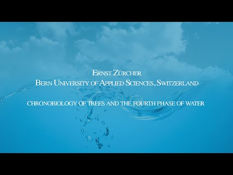 Ernst Zürcher - Conference on the Physics, Chemistry and Biology of Water 2014