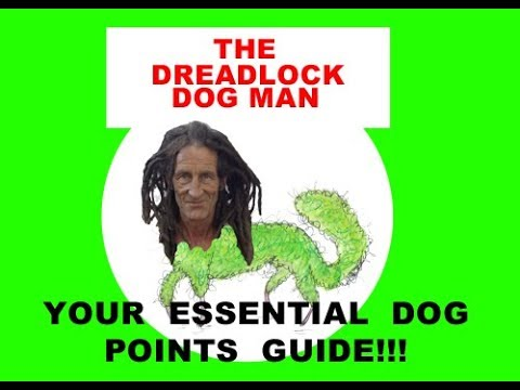 Your Essential Dog Points Guide!!!