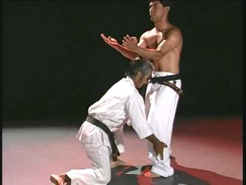 Pangai Noon Karate - Vol. I Sanchin pt 2
