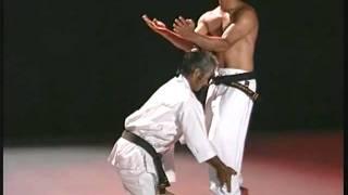 Pangai Noon Karate - Vol. I Sanchin pt 2