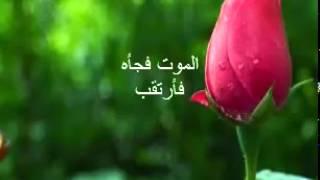 ما بعد الموت لا تقف السيئات-شاهد الفديو