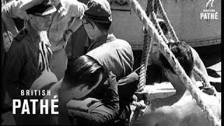Tokyo Bay (1945)
