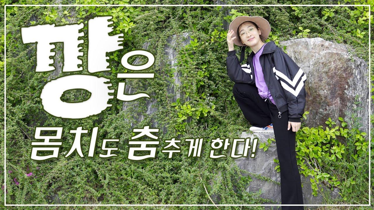 가족 브이로그🌿1일5깡 (몸치주의)+인천 송도 프리미엄 아울렛 (사월에 보리밥&쭈꾸미)