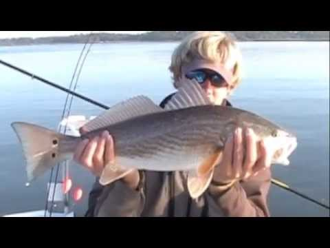 Hilton head sc inshore fishing redfish youtube for Hilton head inshore fishing