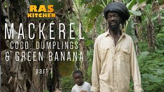 Digging Coco with Ratty and a Mission for Mackerel in Morant Bay! (Mackerel part 1)