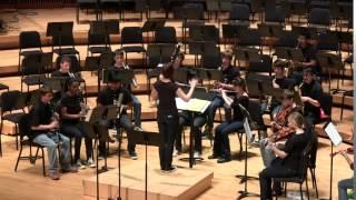 Super Smash Bros. Brawl Medley - Orchestrated - UM Gamer Symphony Orchestra Spring 2014