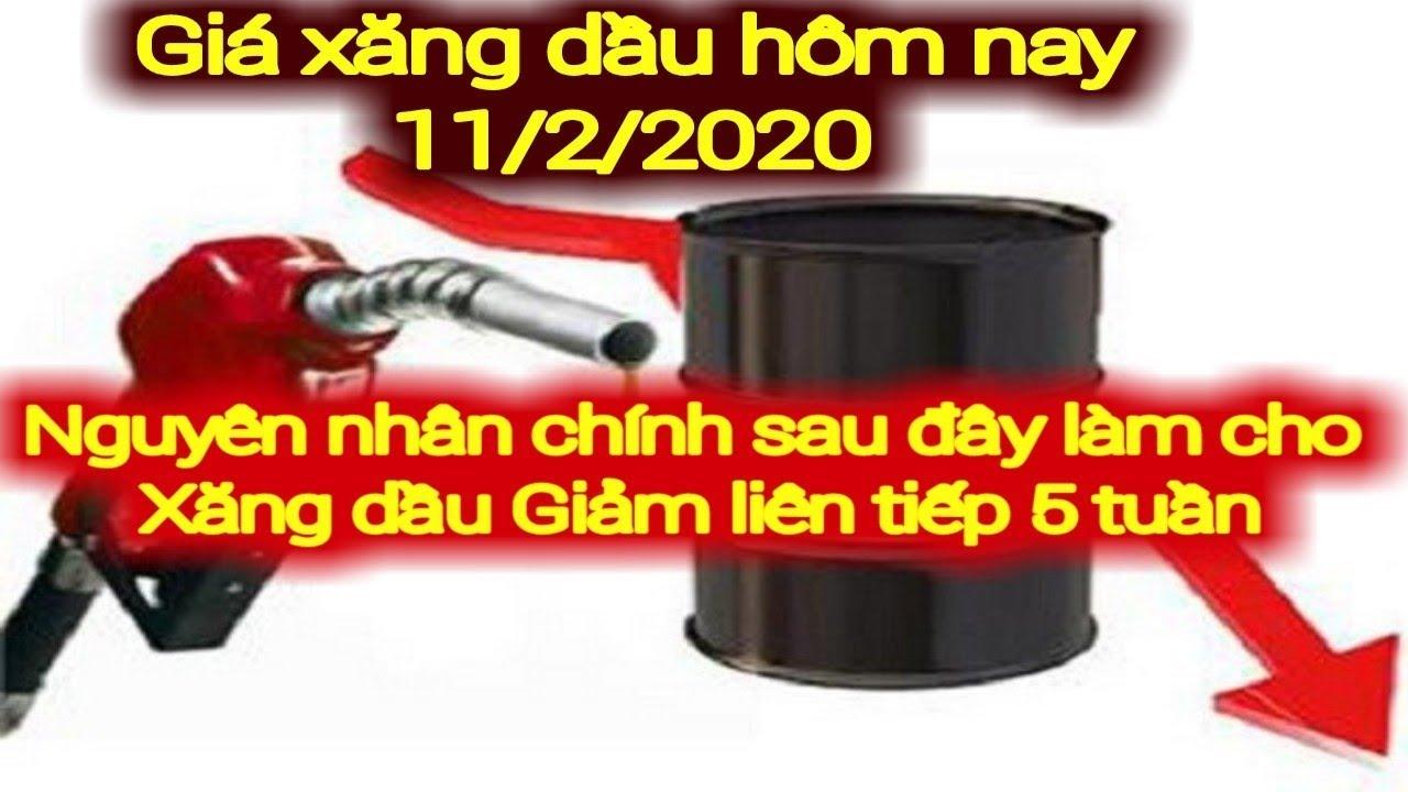 Giá xăng dầu hôm nay ngày 11 tháng 2 năm 2020    giá xăng ngày 11/2