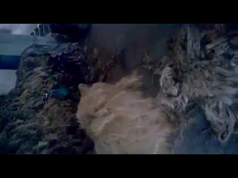 Manila Rope Production Part 1 by Pradeep Traders, Kolkata