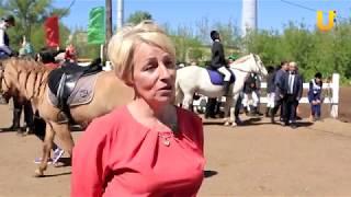 Глазами животных #321. Республиканский конный фестиваль «Крылатые кони»