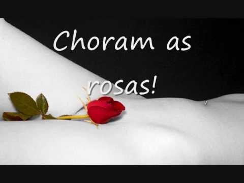 musicas de bruno e marrone choram as rosas