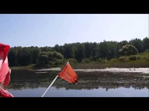 Акулье озеро (2015) смотреть онлайн бесплатно