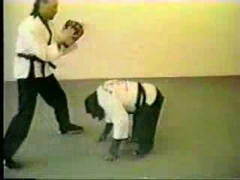 Funny - Kung Fu Monkey
