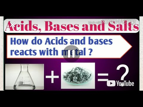 How Do Acids And Bases React With Metals?How Do Metalscarbonates Metalbicarbonates React With Acids?