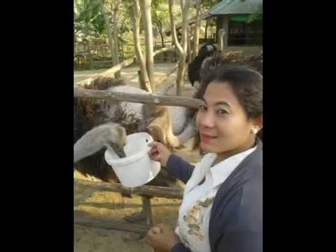Thu Yain Tun(Nay Pyi Taw Visit) Bro Nay July Ko Ko Happily