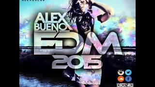 18.EDM 2015 - AlexBueno (www.alexbueno.hol.es)
