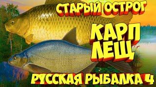 русская рыбалка 4 Лещ Карп озеро Старый Острог рр4 фарм Алексей Майоров russian fishing 4
