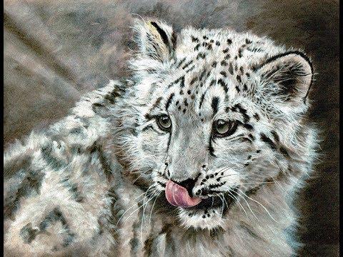 Animals 2017 Online Art Exhibition -  Part 2 - Painting, Photography & 3D Art Categories