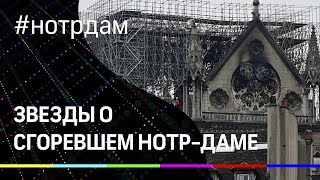 """Насери, Киркоров, """"Эсмеральда"""". Как звезды скорбят по Нотр-Даму."""