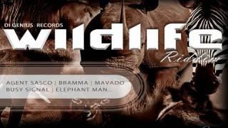 (2011) Wildlife Riddim - Various Artists - DJ_JaMzZ