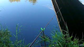 Рыбалка в июле на фидер Река Сура