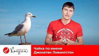 Чайка по имени Джонатан Ливингстон(Дополнительные материалы и комментарии к этому видео: http://kzen.ru/?p=1532 Миникурс: 3 привычки успешных людей:..., 2015-03-22T12:58:27.000Z)