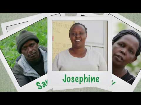 Shamba Shape Up Sn 07 - Ep 2 Pigs, Onions, Diary Cows (Swahi