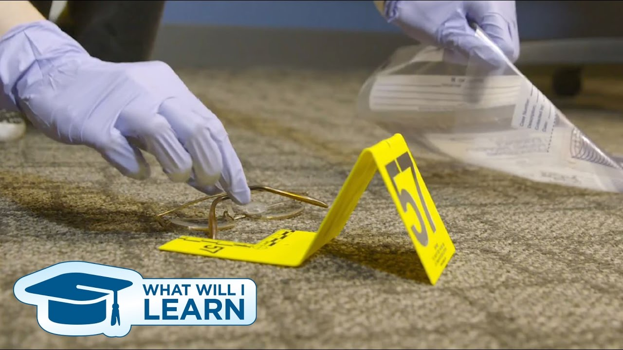 Download What Will I Learn: Criminal Justice