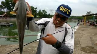 vlog fishing  ghfc terjah kolam memancing berbayar kota masai pasir gudang jalan cemai21