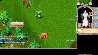 Ultima Online Gameplay   UO Mage Gameplay   Oldest MMORPG