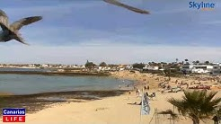 LIVE WEBCAM from Playa La Goleta Corralejo La Oliva Fuerteventura